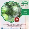 معمول بالتفاح (ALQassimNakheel) Tags: uk apple us sweets ksa تفاح نخيل القصيم معمول