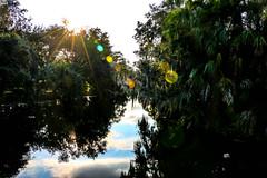 City Park, Quinze. (Tha Faatha) Tags: neworleans citypark