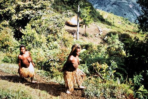 Western New Guinea - Baliem Valley - Dani Women - 20