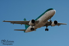Aer Lingus - EI-DEB - 'Naithi' (Pål Leiren) Tags: november reina airport 26 aviation air sofía planes airbus tenerife sur aer aerlingus rw a320 potting lingus planespotting aicraft tfs reinasofía 2013 a320214 gcts eideb naithi rw26 tenerifesurairport