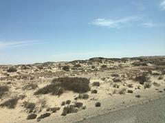 Désert entre Dakla et la frontière Mauritanienne.