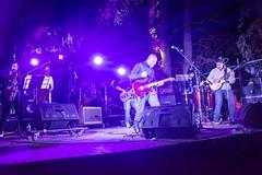 2014-02-21 - No Veras - Festival Pasto - Foto de Marco Ragni