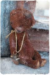 Old Bear (frau_ma) Tags: bear teddy teddybear