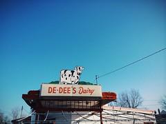 (hopefuldoubtful) Tags: cow signage