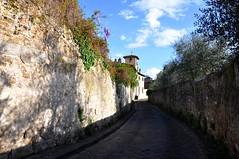 5 aprile in Via San Leonardo... (fiumeazzurro) Tags: chapeau toscana abigfave anthologyofbeauty sailsevenseas