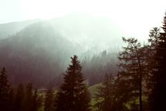 (Sofia Podestà) Tags: italy mountain alps rain fog landscape sofia alpi dolomites dolomiti podestà zobeide photovogue sofiapodestà sofiazobeide