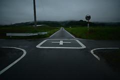 Intersection. (Yasuyuki Oomagari) Tags: road countryside rural green sign nikon carlzeiss zeiss distagont2821 rain rainy crossroad landscape