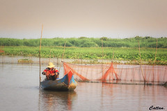 Fisherman's life - Cambodia (cattan2011) Tags: fisherman waterscape seascape river cambodia travelblogger traveltuesday travelphotography travel natureperfection naturephotography nature landscapeportrait landscapephotography landscape