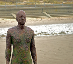 Front (bill.wilkes57) Tags: anotherplace anthonygormley crosby liverpool seaside statues
