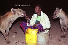 The-Hyena-Man-of-Harar,-Ethiopia-#2 (deemixx) Tags: ethiopia africa harar hyenaman hyenas