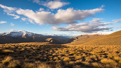 Hike in the Crown Range (Derek Midgley) Tags: d7536612 crown range new zealand above queenstown