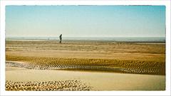 Just a moment on the beach # 8 (Napafloma-Photographe) Tags: 2017 fr france géographie hautsdefrance landscape letouquet métiersetpersonnages pasdecalais paysages personnes techniquephoto napaflomaphotographe photoderue photographe plage province sihouette streetphoto streetphotography