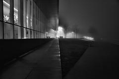 Choice is made.. (_rebelrouser_) Tags: milwaukee blackandwhite monochrome moody milwaukeeartmuseum nightshot nightphotography nightimeistherighttime