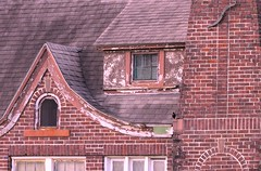 In and an a Out (clarkcg photography) Tags: window windows peak gingerbreadhouse brick missing angles pitch frame bird inandout windowwednesday