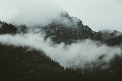 Austria (marinaweishaupt) Tags: austria österreich landscape landscapes landschaft mountains mountain berge alps alpen forest fog nature travel outdoor