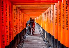 Fushimi Inari Taisha (Flavia-cyb) Tags: fushimiinari santuario tempio temple portali giappone kyoto people torii story travel viaggio canon