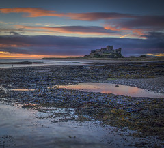 Bamburgh Dawn (david newbegin) Tags: bamburgh bamburghcastle dawn northeastengland northumberland northsea rocks castles