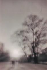 (gruss.mir) Tags: 2017 35mm dreamscape film ishootfilm landscape pinhole print prints scan vivian xp2