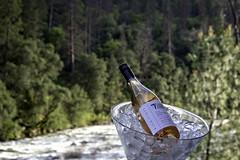 Relaxing on the Merced (lennycarl08) Tags: mercedriver yosemite roséwine kokomowinery