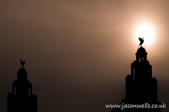 Silhouette of a Liver bird (wellsie82) Tags: england architecture building buildingexterior builtstructure city citylife cityscape clock clockface colour colourimage day landscapeformat liverbird liverpool liverpoolskyline liverpoolwaterfront longexposure merseyside nopeople northwestengland pierhead royalliverbuilding silhouette sky skyline street sunlight threegraces unescoworldheritagesite urban urbanlandscape urbanskyline