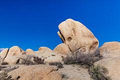Whale Rock (Daddy-O Photo) Tags: joshuatreenationalpark joshuatree whitetank whalerock california nationalpark rockformation signifyingthewhale