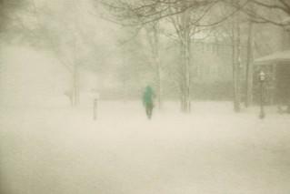 ~Blizzard Conditions~