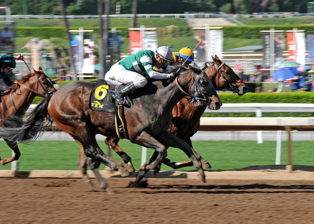 The World S Best Photos Of Horse And Santaanita Flickr