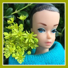 Fashion Queen (Foxy Belle) Tags: vintage barbie fashion queen fq doll spring flower green maple tree nature