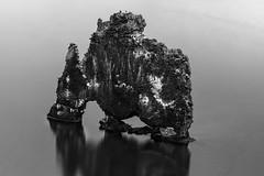 Hvítserkur (Eisarri) Tags: hvítserkur iceland basalt stack seastack blackandwhite bw rock rhino drinking water longexposure reflection