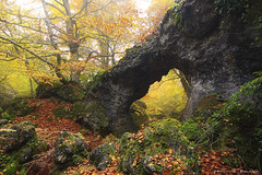 Forest secrets (Hector Prada) Tags: bosque roca arco otoño niebla arboles hojas naturaleza forest rocks arc autumn fog mist tree leaves nature paisvasco basquecountry