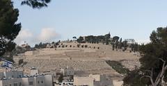 001 Gerusalemme panoramic_024-Pano (Teodor Ion) Tags: terrasanta gerusalemme montesion israeljerusalem templemount oldcityofjerusalem