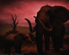 The Silhouettes of Sunset (Hunnie.VonM) Tags: secondlife sl animals desert elephants safari devin2 devin sim photographyspots portrait