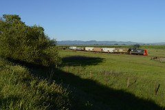 blue, green & great. (CN Southwell) Tags: nwp northwestern pacific mp15ac sonoma county california