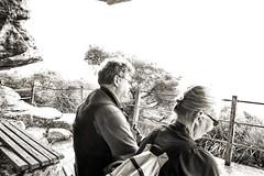 63+444: Who'll stop the rain? (geemuses) Tags: shellybeach manly manlyheadlands nsw australia northernbeaches umbrella rain weather birds birdman palms tress landscapes nature street streetphotography scenic scenery views life