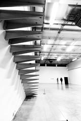 Escalier (Saroush008) Tags: architecture artmoderne palaisdetokyo paris