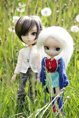 summertime (vodoroslobyknovennaya) Tags: pullip luka megurine vocaloid doll taeyang wayne