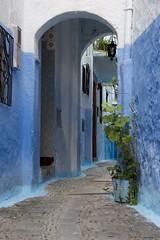 Rincones de Chaouen (ramosblancor) Tags: humanos humans pueblos villages towns calles streets historia history arquitectura architecture color azul blue chefchaouen marruecos morocco