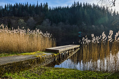 Jetty at Loch Ard (ola_er) Tags: jetty water boat loch lake light ard scotland trossachs roadtrip beauty beautiful landscape uk