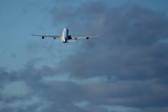 Airbus A340-300, YUL (Bo No Bo) Tags: d7100 montréal québec yul cyul aéroport dorval airport avion airplane plane aeroplane aircraft extérieur outdoors ville city urbain urban aéroportinternationalpierreelliotttrudeaudemontréal angéline airfrance a340 airbus airbusa340 06gauche a343 a340300 airbusa340300 quadriréacteur fglzr ciel sky bleu blue nuage cloud décollage départ takeoff fumée smoke exhaust beacon beaconlight feuanticollision anticollisionlight phareanticollision rouge red