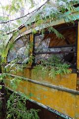 IMG_2660 (Irina Souiki) Tags: rusty crusty cars mcleansautowreckers milton ontario old oldcars