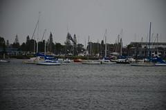Port Macquarie, NSW, Australia (phudd23) Tags: portmacquarie boats nsw newsouthwales australia