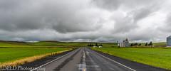 NT3.0033-CW1605618_38647 (LDELD) Tags: palouse colton washington unitedstates us wheat spring green
