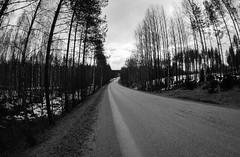 Road 434 (Antti Tassberg) Tags: 15mm fisheye tie siikakoski sulkava bw travel puumala kevät suomi blackandwhite finland monochrome prime road scandinavia spring southernsavonia