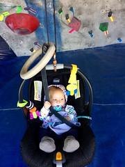 First Climb (enovember) Tags: baby climb rock gym belay chicco carabiner slo sanluisobispo slocoopclimbinggym climbinggym slocoop pacifier