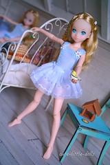 Dreaming Yellow Bird💕 (cute-little-dolls) Tags: ruruko rurukodoll doll toy ballerina bird miniature kawaii bedroom