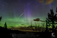 TemaFoto - Nordlys på Knuten-3 (Tor Magnus Anfinsen) Tags: aurora nordlys norge norway kongsberg knuten