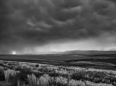 Nevada (David Renwald) Tags: schneiderkreuznachlens 45mm