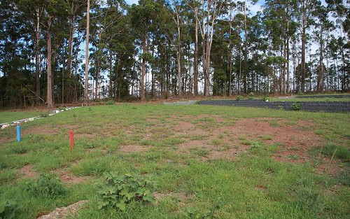 230 The Ruins Way, Port Macquarie NSW