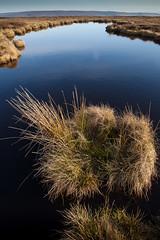 1920p 72dpi-7104 (reach.richardgibbens) Tags: bowland lancashire england uk littledale fell moorland moor valley dale