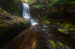 Horseshoe Falls (Phillip Norman Photography) Tags: tasmania horseshoe waterfall falls